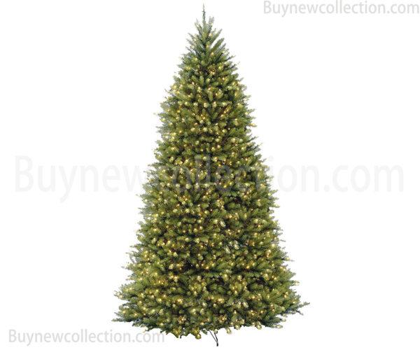 Christmas-National-Tree.jpg